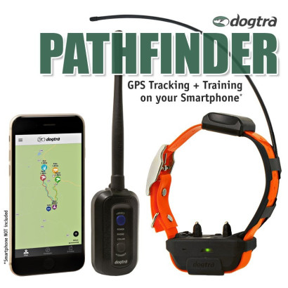 Ensemble dogtra PATHFINDER GPS & DRESSAGE